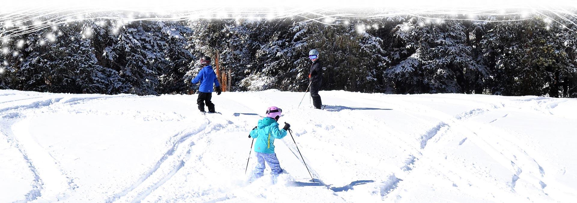 kids skiing in powder