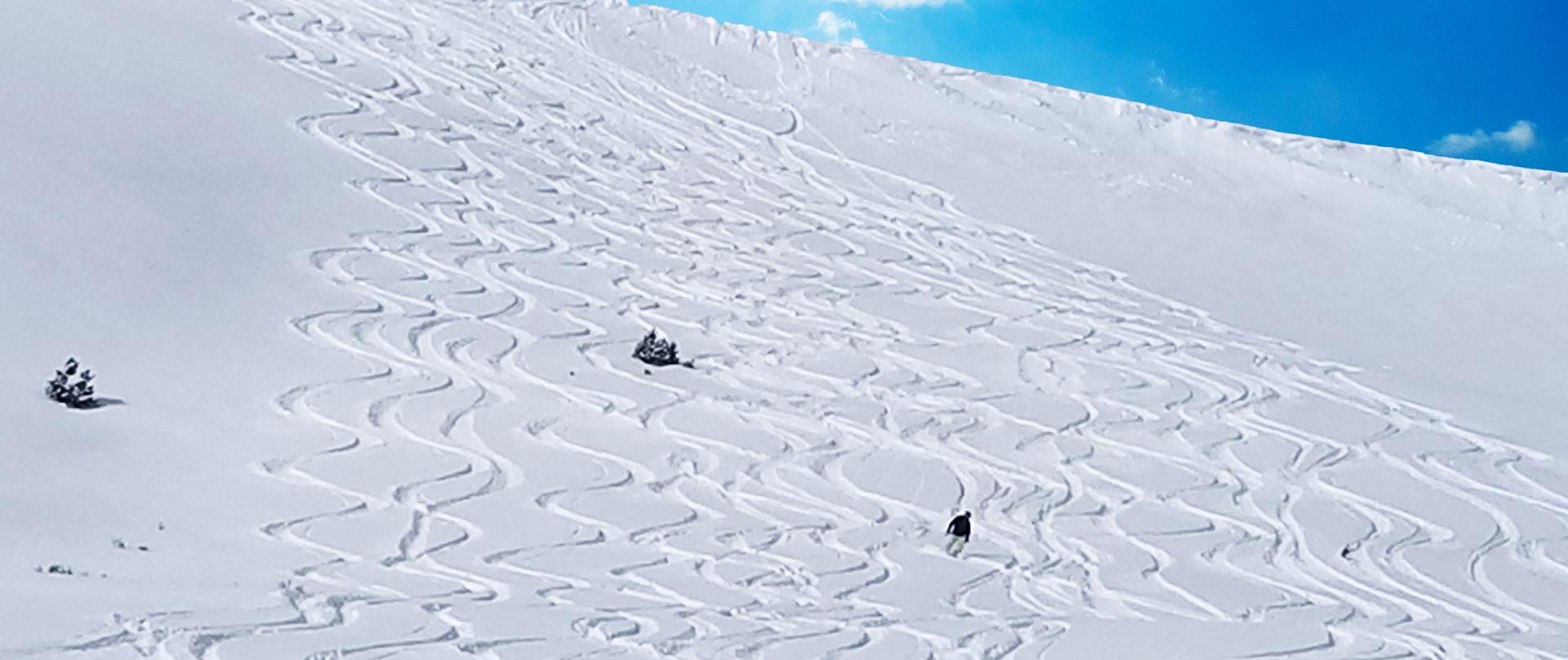 Chicago Ridge skiing
