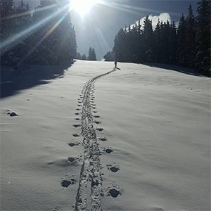 uphill skier